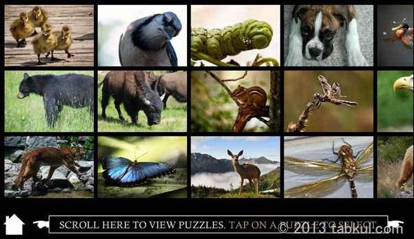 通常99円のAndroid アプリ「Premium Puzzle Gallery – Animals」の使用レビュー
