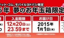 ヨドバシカメラ福袋「2015年 夢のお年玉箱限定販売」、本日9時より予約開始