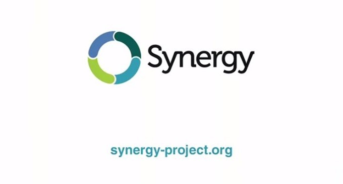 Synergy-Review-02