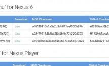 Google、Nexus 6向けAndroid 5.1(LMY47D)ファクトリーイメージ公開/ファイルサイズ