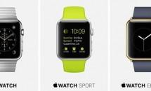 Apple Watchの容量8GBは全モデル共通、音楽2GB+画像75MBまで保存可能