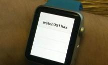 Apple Watch(watchOS 1.0)ハック、ネイティブUIKitアプリの動作に成功