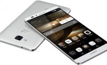 次期Nexusスマートフォン、Huaweiから2015年後半リリースか