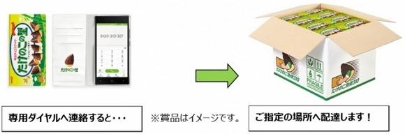 takenokophone-02