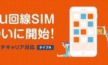 BIGLOBEモバイル、新たにau回線のSIMカード「タイプA」提供開始・月額料金