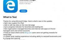 Microsoft Edge for iOS、次期バージョンでSplit Viewをサポートへ