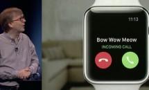 Apple Watchは世界的に品薄状態、生産を制限か:日経