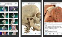 当初1200円だった3D人体模型『Pocket Anatomy.』が遂に0円に、iOSアプリ値下げ中 2019/10/13