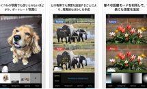 iPhone/iPadアプリセール 2017/10/3 – 写真にボカシ効果を追加『深度ブラー』などが無料に