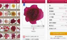 iPhone/iPadアプリセール 2017/10/14 – 約570品種を収録『バラ図鑑』1400円などが無料に