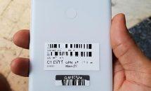 Pixel 3 XLホワイトカラーの実機画像リーク