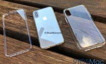 6.1型『iPhone 9』と6.5型『iPhone X Plus』のダミーモデルとケースの動画