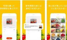 通常120円の賞味期限を管理『TastyBox』などiOSアプリ値下げ中 2019/1/10