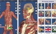 通常370円の3D人体模型『3D Anatomy』が1日限定0円に、Androidアプリ値下げセール 2019/3/2