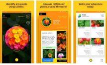 通常580円のカメラで植物を識別『Plant Identifier』が240円など、Androidアプリ値下げセール 2019/4/14
