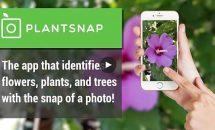 通常1680円のカメラで植物スキャン『PlantSnap Pro』が900円に、Androidアプリ値下げセール 2019/4/16