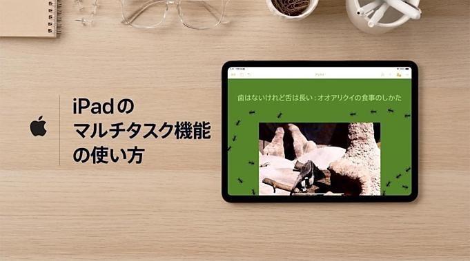 Apple-news-20190708