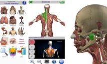 通常270円が0円に、3D人体モデル『Visual Anatomy 2』などAndroidアプリ値下げセール 2019/11/30