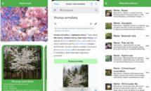 通常250円が0円に、花や樹木を知る植物図鑑『FindPlant』などiOSアプリ値下げ中 2020/09/12